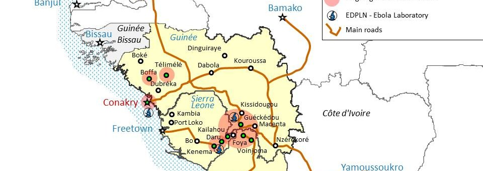 EBOLA: LA DIFFUSIONE DEL VIRUS IN TUTTA L'AFRICA